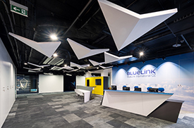 Kanceláře firmy BlueLink